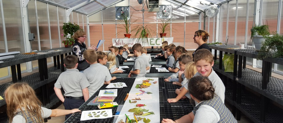 2nd Grade in the greenhouse